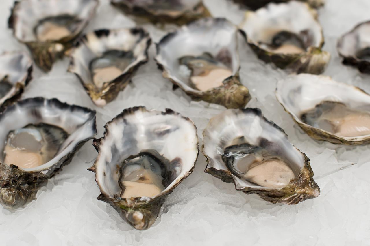 Meeresfrüchte - Vielfalt aus den Ozeanen